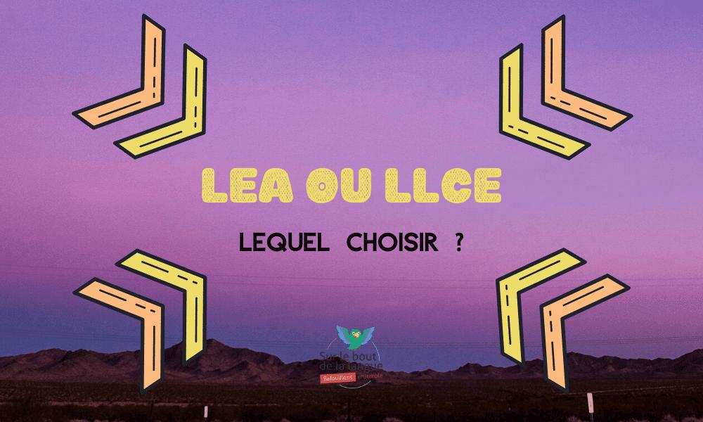 Quelles Etudes de Langues après le Bac : LEA ou LLCE ?